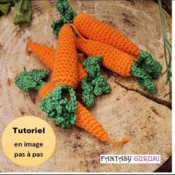 tutoriel carotte