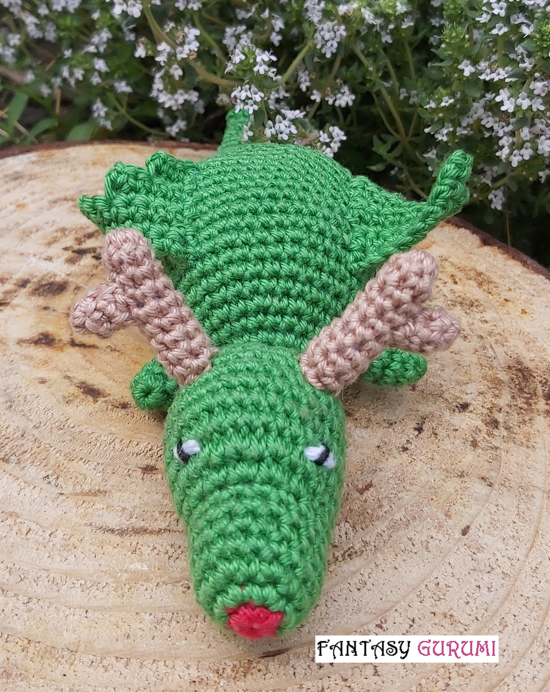 rudy dragon-renne